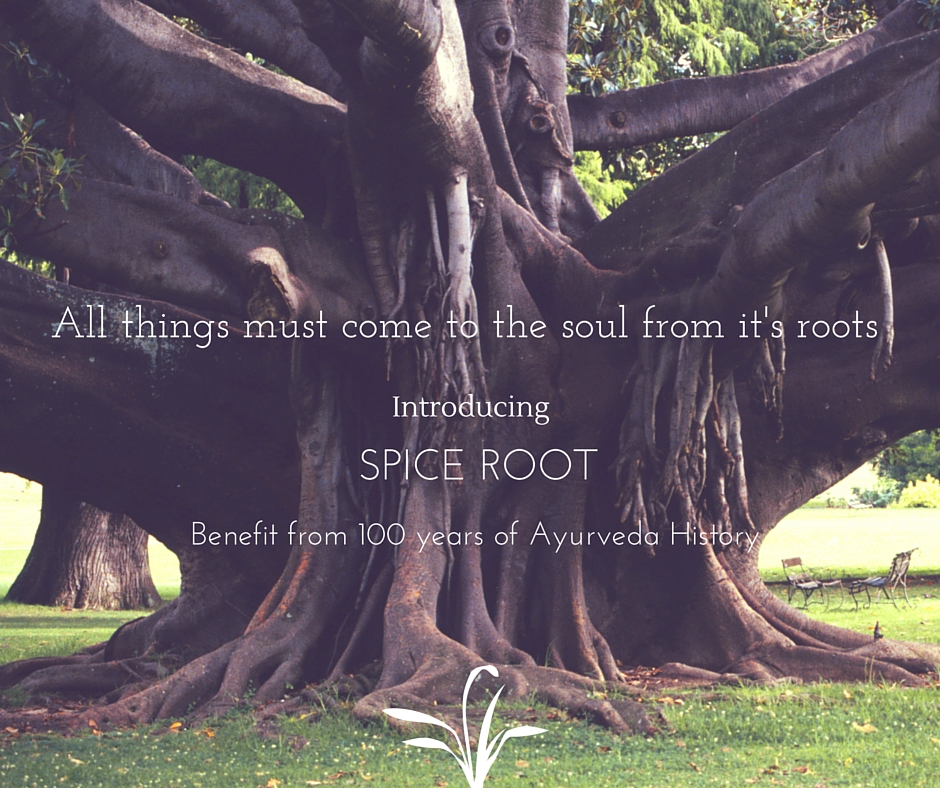 All things must come to the soul from it's roots