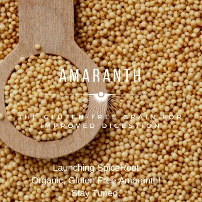 Organic Amaranth is truly a supergrain